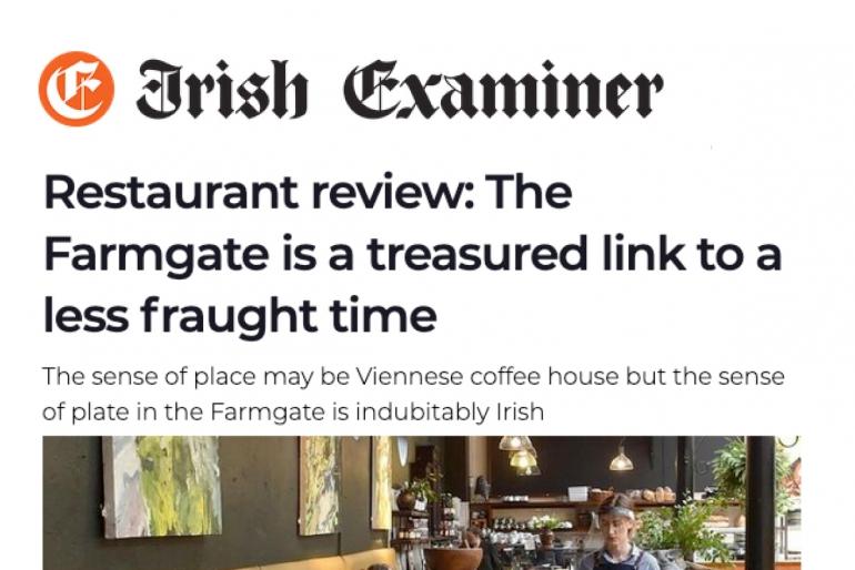 Irish Examiner review, August 2020 by Joe McNamee